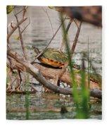 42- Florida Red-bellied Turtle Fleece Blanket