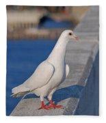 21- White Dove Fleece Blanket