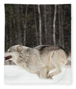 Wolf In Winter Fleece Blanket