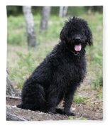 Black Labradoodle Fleece Blanket