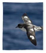 Cape Petrel Fleece Blanket