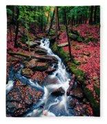 Chesterfield Gorge New Hampshire Fleece Blanket