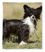 Chinese Crested Dog Fleece Blanket