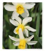 Cyclamineus Daffodil Named Jack Snipe Fleece Blanket