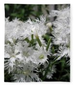 Dianthus Superbus - White Fleece Blanket