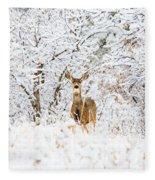 Doe Mule Deer In Snow Fleece Blanket