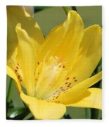 Double Asiatic Lily Named Fata Morgana Fleece Blanket