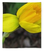 Dwarf Cyclamineus Daffodil Named Jet Fire Fleece Blanket