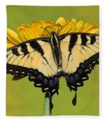 Eastern Tiger Swallowtail Butterfly Fleece Blanket