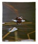 European Common Brown Frog Fleece Blanket