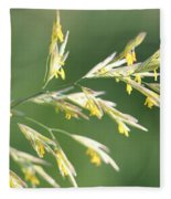 Flowering Brome Grass Fleece Blanket