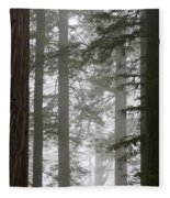 Foggy Coast Redwood Forest Fleece Blanket