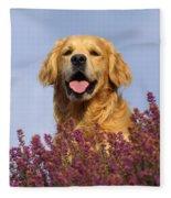 Golden Retriever Dog Fleece Blanket