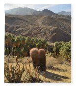 Indian Canyons Fleece Blanket