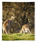 Kangaroo Fleece Blanket