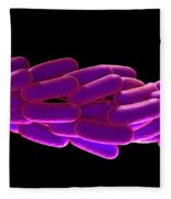 Legionella Pneumophila Bacteria Fleece Blanket