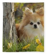 Pomeranian Dog Fleece Blanket