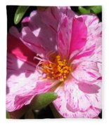 Portulaca Named Sundial Peppermint Fleece Blanket