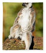Ring Tailed Lemur Fleece Blanket