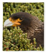 Striated Caracara Fleece Blanket