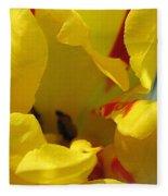 Triumph Tulip Named Washington Fleece Blanket
