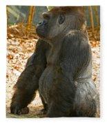 Western Lowland Gorilla Male Fleece Blanket