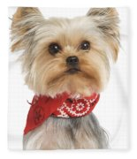 Yorkshire Terrier Dog Fleece Blanket