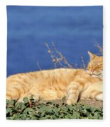 Cat In Hydra Island Fleece Blanket