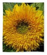 Dwarf Sunflower Named Teddy Bear Fleece Blanket