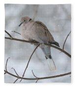 Eurasian Collard Dove Fleece Blanket