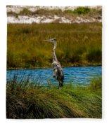Florida Beach Scene Fleece Blanket