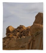 Hampi Landscape Fleece Blanket