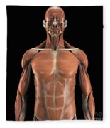 Muscles Of The Upper Body Fleece Blanket