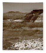 Painted Desert Fleece Blanket