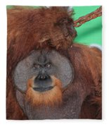 Portrait Of A Large Male Orangutan Fleece Blanket