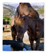 Rancho Oso - California Fleece Blanket