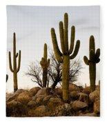 Saguaro Cacti Fleece Blanket