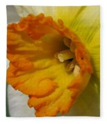 Small-cupped Daffodil Named Barrett Browning Fleece Blanket