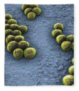 Superbug Mrsa Fleece Blanket