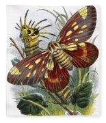 The Butterfly Vivarium Fleece Blanket