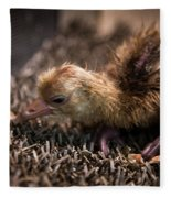 Whooping Crane Reintroduction, Direct Fleece Blanket