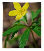 Yellow Wood Anemone Fleece Blanket