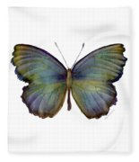 65 Moonglow Butterfly Painting By Amy Kirkpatrick