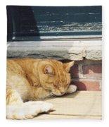 #665 03 Catnap  Fleece Blanket