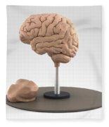 Clay Model Of Brain Fleece Blanket
