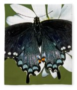 Eastern Black Swallowtail Fleece Blanket