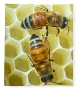 Honey Bees In Hive Fleece Blanket