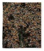 Monarch Butterflies Fleece Blanket