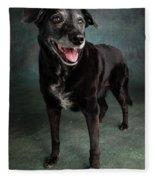 Portrait Of A Labrador Golden Mixed Dog Fleece Blanket
