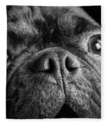 Portrait Of Pug Bulldog Mix Dog Fleece Blanket